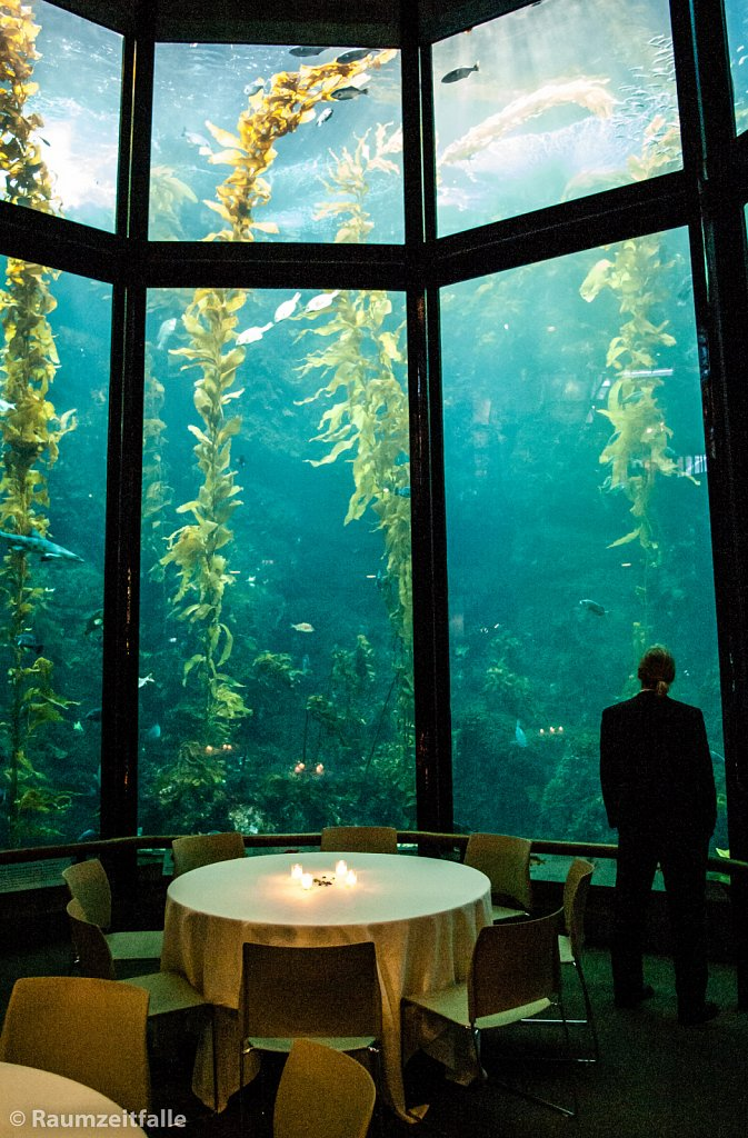 Aquarium Inside Out